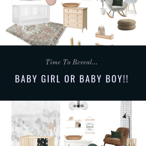 nursery design, gender reveal